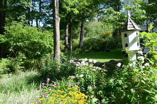 Camden Maine Stay Inn: Garden