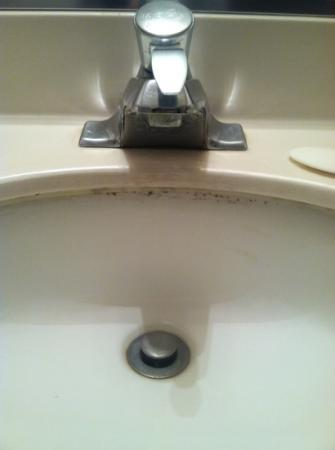 Econo Lodge West: mildew in the sink!