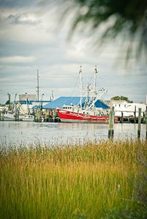 Langdon House Bed and Breakfast: A view of shrimpboats across the marsh grass in Beaufort