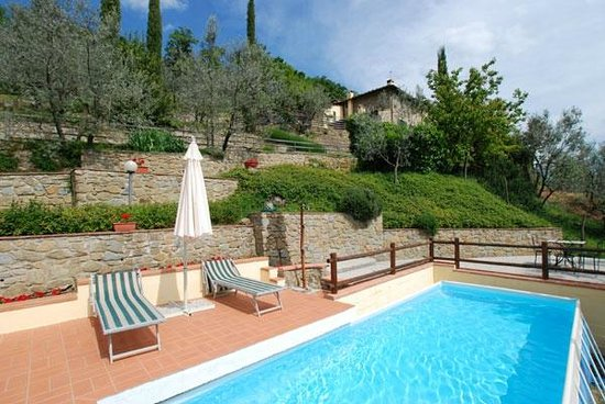 Villa Oliveta: Swimming pool