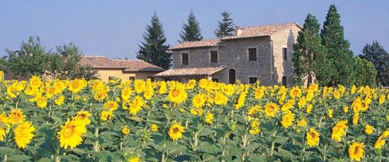 Residenza il Girasole