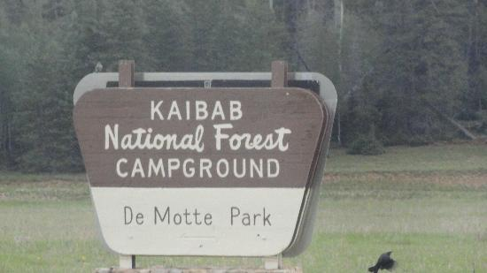 DeMotte Campground