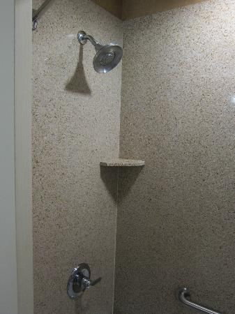 Holiday Inn Express Hotel & Suites Lake Placid: Shower.  Nice shower head.