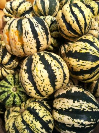Schoharie, Nowy Jork: squash season