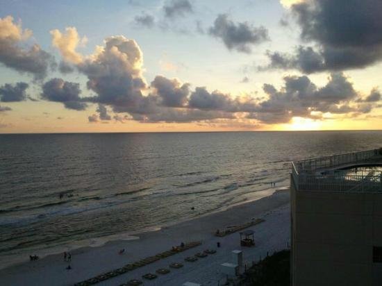 Palmetto Inn & Suites: View from the room
