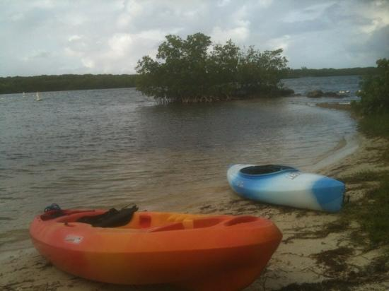 John Pennekamp Coral Reef State Park Campgrounds: kayaking in grass