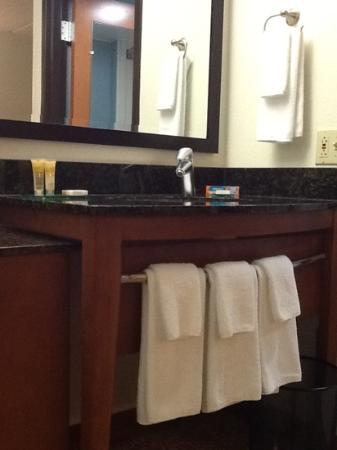 Hyatt Place Raleigh-Durham Airport: vanity