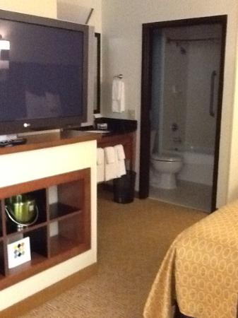 Hyatt Place Raleigh-Durham Airport: bathroom area