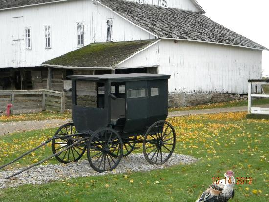 Nappanee, IN: Buggy