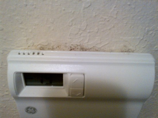 Holiday Inn Express Nashville Airport: Appears to be mold by thermostat