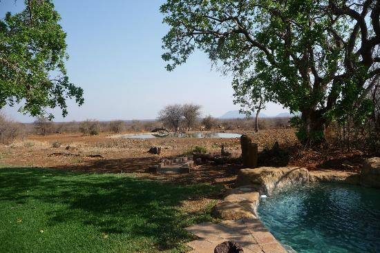 The Bush House: view of water hole & pool so close