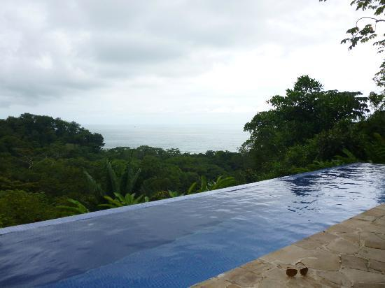 TikiVillas Rainforest Lodge: View from the pool