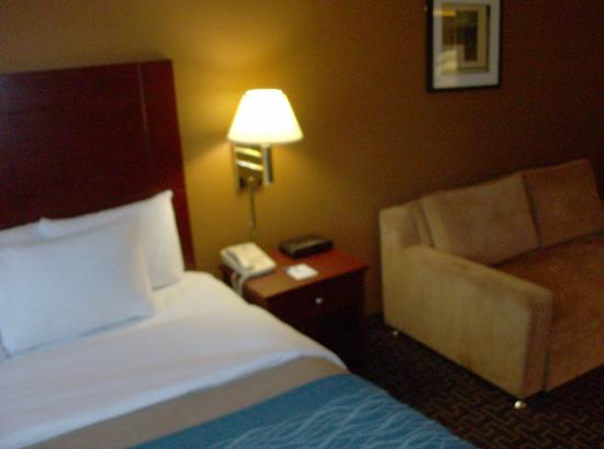 Milton Inn and Suites: King Deluxe with Sleeper Sofa