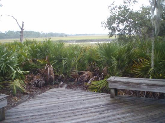 The Lodge on Little St. Simons Island: View from Cedar Lodge deck.