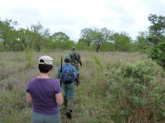 Rhino Walking Safaris & Rhino Post Safari Lodge: A truely fantastic walk looking for animals. Brillant.