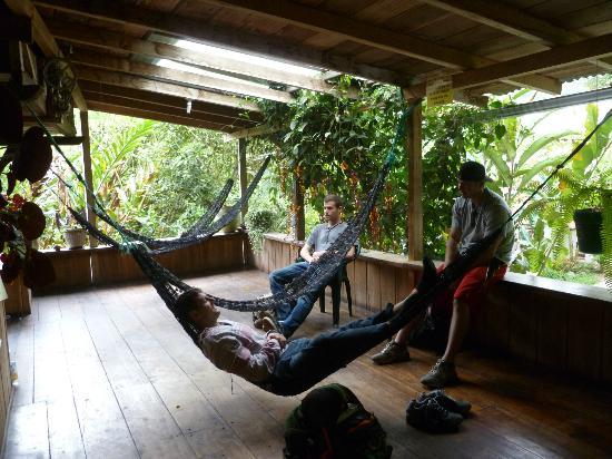 La Casa de Cecilia: Common area on the second floor with hammocks to enjoy nature in.