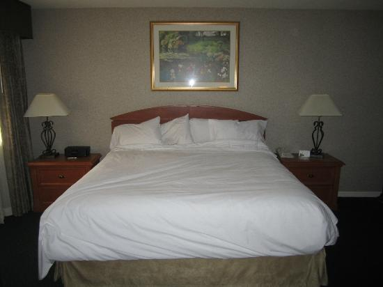 Quality Suites: King size bed