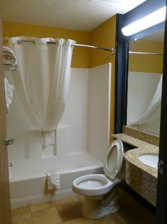Microtel Inn & Suites by Wyndham New Braunfels: Bathroom