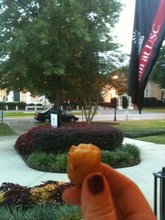 Inn at USC Wyndham Garden: sitting on the front porch enjoying a fried macaroni and cheese bite, gratis!