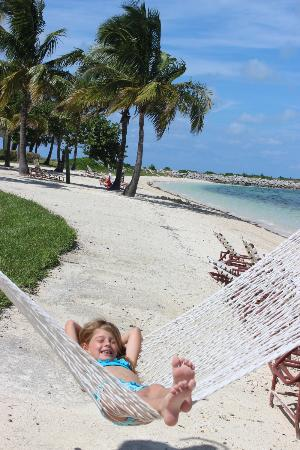 Old Bahama Bay: hammocks on the beach