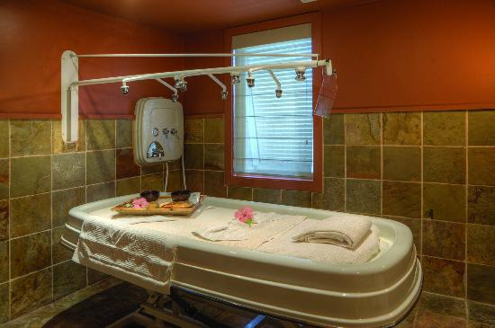 try a vichy shower treatment it 39 s heavenly picture of spa at amelia island plantation. Black Bedroom Furniture Sets. Home Design Ideas