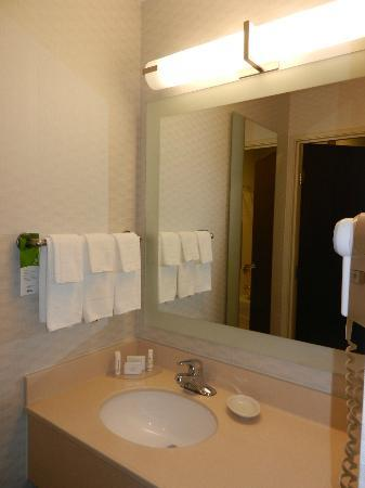 SpringHill Suites Frankenmuth: washing area