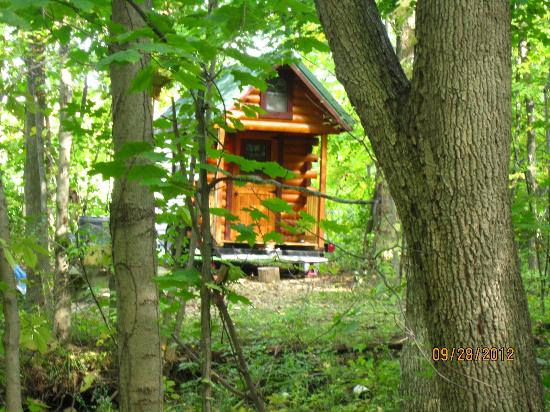 The cabin picture of deer creek bed and breakfast for Camp gioia ohio cabine