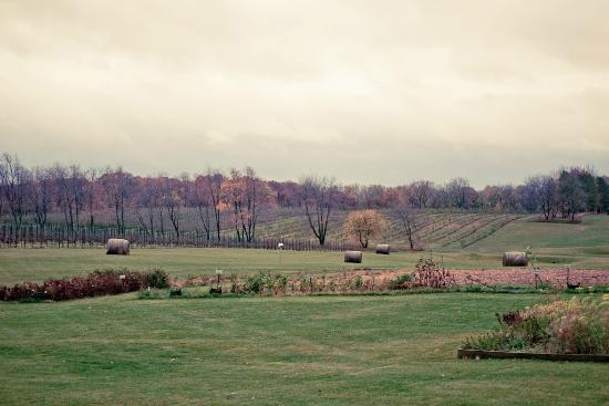 Copperstone Inn: Beautiful fall landscape