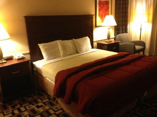 DFW Airport Hotel &amp; Conference Center : Mini-Suite 