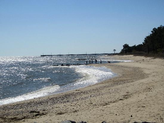 The pier picture of point lookout state park scotland for Md fishing report point lookout