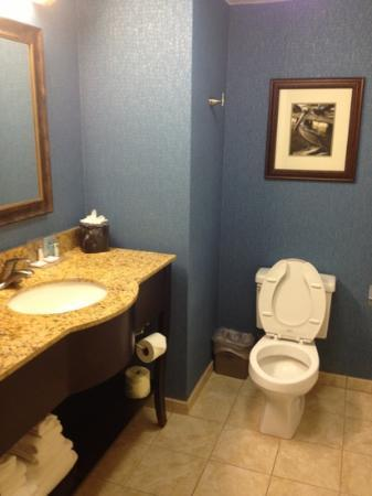 Hampton Inn Jacksonville/Ponte Vedra Beach-Mayo Clinic Area: bathroom