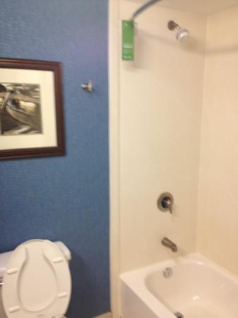 Hampton Inn Jacksonville/Ponte Vedra Beach-Mayo Clinic Area: shower