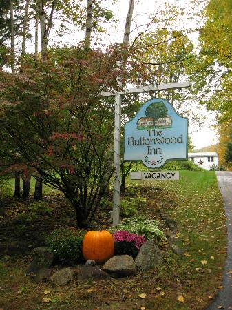 Buttonwood Inn on Mount Surprise: Coming upon the Inn