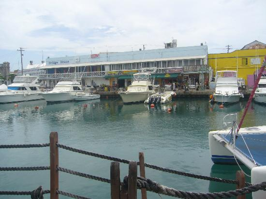 Yellow Bird Hotel: Harbour from Waterside restaurant