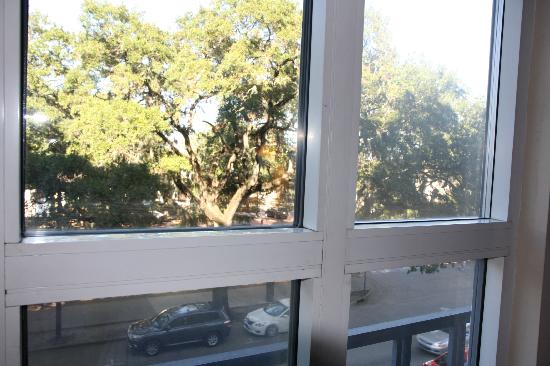 Hampton Inn Savannah - Historic District: Tree level at 3rd floor, windows were dirty outside