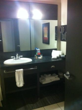 Grand Times Hotel - Quebec City Airport: Bathroom