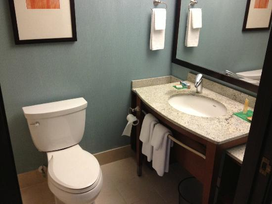 Hyatt Place Milwaukee Airport: bathroom
