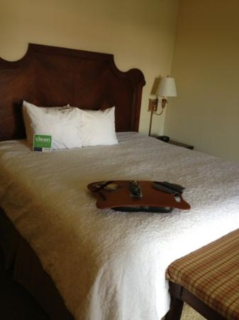 Hampton Inn Savannah - Historic District: nice bed