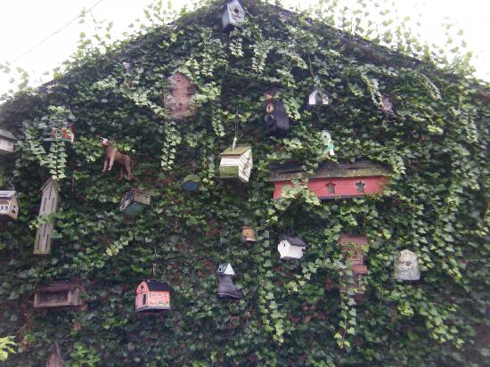 Farnsworth House Inn: Birdhouses on the outside of the building.