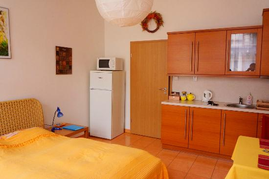 Aparthotel City 5: Studio room complete with fridge, micro-toaster, water kettle