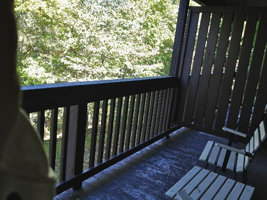 Carter Caves State Resort: Balconey overlooks mature wooded area. Your dog can easily slip under the barriers to the next r