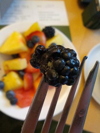 Orchard Garden Hotel: Breakfast at Orchard Garden: mold in your fruit.