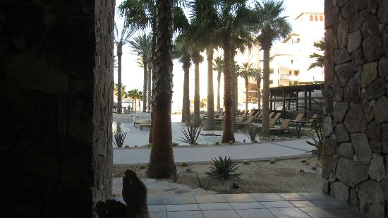 Grand Solmar Land's End Resort & Spa: Dawn on our Walk-Out terrace