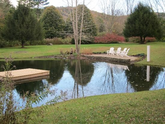 Jackson House Inn: Pond out back
