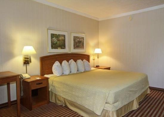 Quality Inn Wickliffe: Guest Room