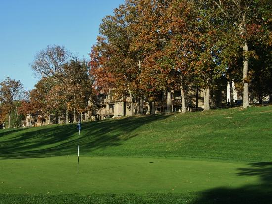 Lakeview Golf Resort and Spa: Golf course surrounds all the condos