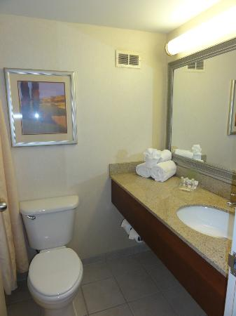 Holiday Inn Cincinnati Riverfront: Bathroom