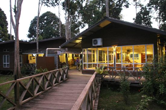 Borneo Nature Lodge: Dining Area