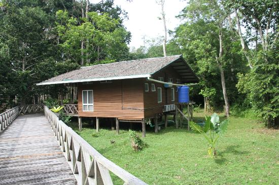 Borneo Nature Lodge: Accomidation Lodge Eco water system