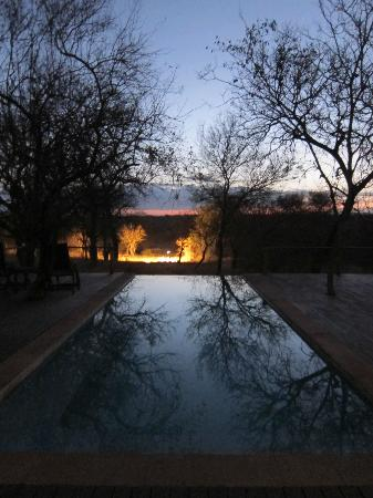 Toro Yaka Bush Lodge: Poolview by night
